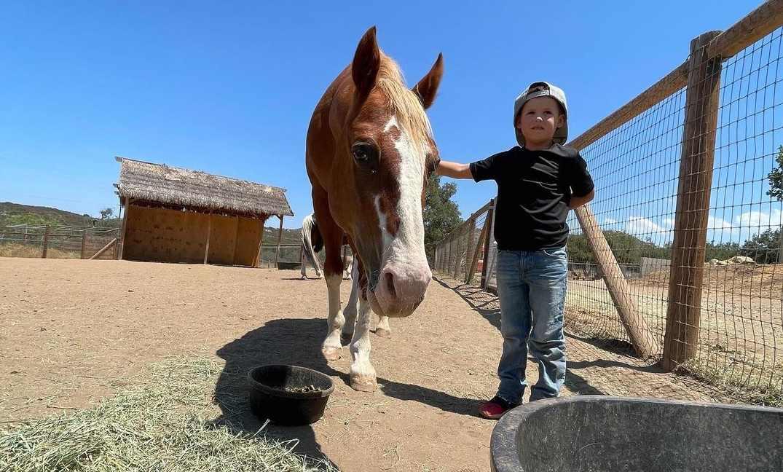 Kid at animal Sanctuary